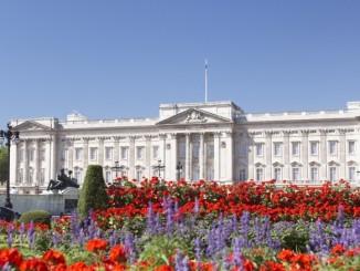 buckingham-palace-garden