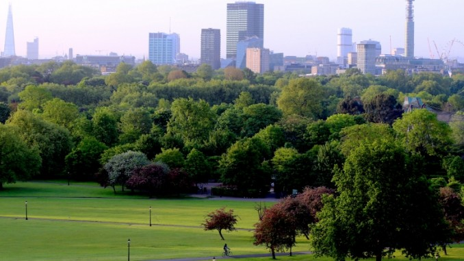 primrose-hill-london